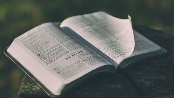 What does the Bible say about Immigration?