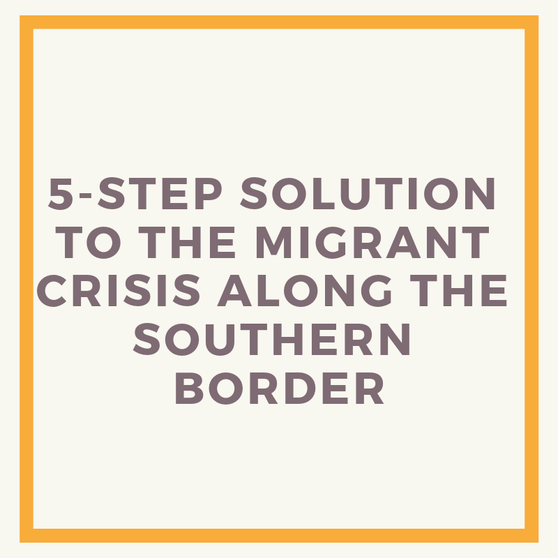 5-Step Solution To The Migrant Crisis Along The Southern Border